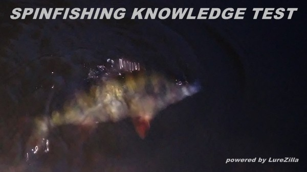 spinfishing knowledge test